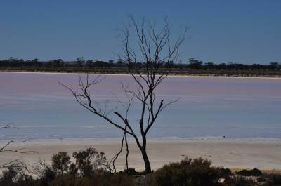 b2ap3_thumbnail_2535-Lake-Grace-North.JPG