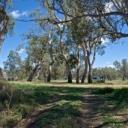Passmore Reserve